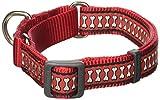 Red Dingo Martingale Reflektierende Knochen 20mm Choke Halsband