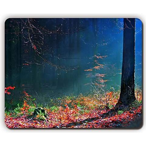 high-quality-mouse-pad-m0093-leaves-autumn-wood-trees-earth-beams-game-office-mousepad-size-260-x-21
