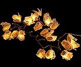 Guru-Shop Blüten LED Lichterkette Chiang Mai 20 Stk. - Naturweiß, Papier, Blüten Lichterketten