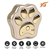 Dog GPS Tracker 3G cane gatto animale localizzatore GPS Real Time Tracking device WCDMA Dog Track impermeabile Lifetime free web app iOS Android
