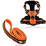 #9: PetsUp Front Range Dog Harness & Leash Set (M Harness + 2cm wide 110cm long, Orange)