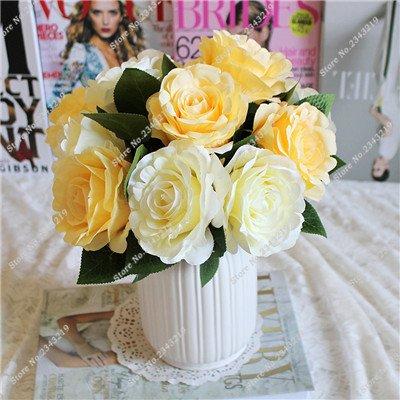 Exotique Miniature Bonsai Fleur Rose Rosas Graine Bricolage jardin et maison embellissant de purification d'air 110 Pcs/Sac 4