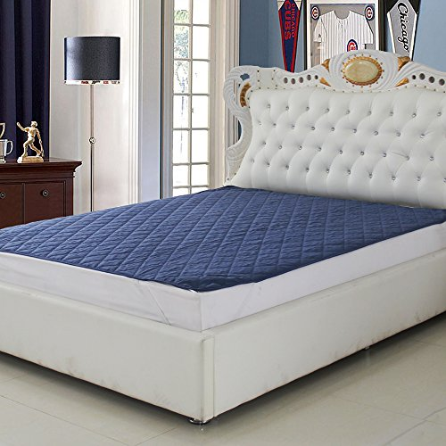 Signature Mattress Protector Blue Double Bed Waterproof and Dust proof (72X78)