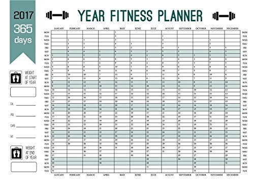 2017-maxi-size-year-calendar-planner-365-day-fitness-record-wall-chart-weight-loss-chart-poster-size