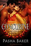 Concubine (Saxa's Journey Book 4)