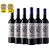 Argentinean Red Wine - The Waxed Bat Cabernet Shiraz Malbec - 6 bottles
