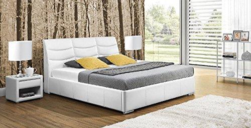 Design Luxus Lounge Polsterbett Doppelbett Futon-Bett Leder Weiß SL32 NEU!