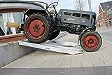 Baumarktplus 2 Stück TrutzHolm® Profi Alu Auffahrrampe ca. 212 cm bis 3.800 kg/Paar Verladerampe Auto