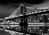 Artis 608690 Puente de Brooklyn Tela