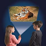 Brainstorm Toys E2012 Animal Torch and Projector