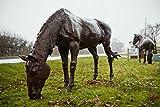 Grasende Pferde–Garden Feature Statue/Ornament//Life Größe/Gusseisen