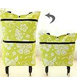 Honeysuck Große Einkaufstrolley zusammenklappbar Dual Rad Tasche (grün Blume)