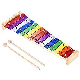 ammoon Glockenspiel Colorato Xilofono Legno e Alluminio Strumento Musicale a Percussione Giocattolo