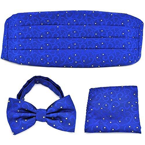 PenSee Fliegen-Set, blau geblümt & gepunktet, Golde, mit Kummerbund, Einstecktuch, quadratisch