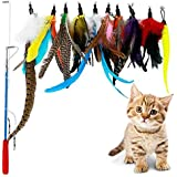 Cat Toy Interactive Feather Teaser Pet Play Wand Toy with 1 Poles 7 Attachments Worm Birds Feathers for Kitten Cats