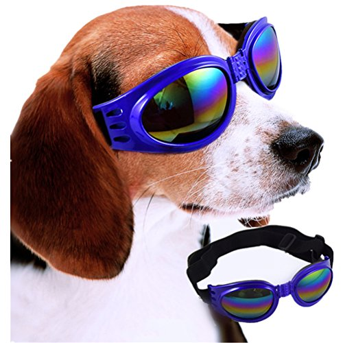 Maibar Hund-Sonnenbrille im Freiensport für eine Fahrt-Haustier-Dekoration-Glas-Party-Gläser (Blau)