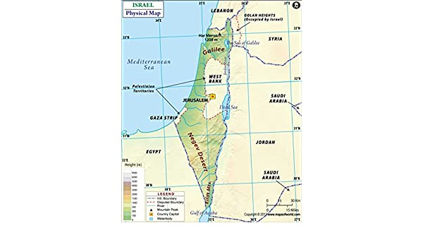 Cartina Israele Fisica.Israele Mappa Fisica 91 4 Cm W X 82 1 Cm H Amazon It