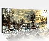 Acrylglasbild 100x40cm Winter Schnee Weihnachten Landschaft Acrylbild Glasbild Acrylglas Acrylglasbilder 14A1640, Acrylglas Größe1:100cmx40cm