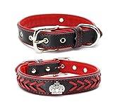 SLZZ geflochtene, gepolsterte Leder-Halsbänder– glänzende Strass-Krone & stilvolles Zopfmuster–weich gepolstertes Tierhalsband–passend für kleine bis mittelgroße Hunderassen