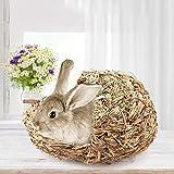 FeiyanfyQ - Letto da Masticare per Conigli in Erba, Realizzato a Mano, con Cannuccia Intrecciata per Piccoli Animali Come criceti, porcellini d'India, Gatto, Coniglio e ratti Multicolore