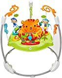 Best Jumperoos - Fisher-Price Roarin' Rainforest Jumperoo Review