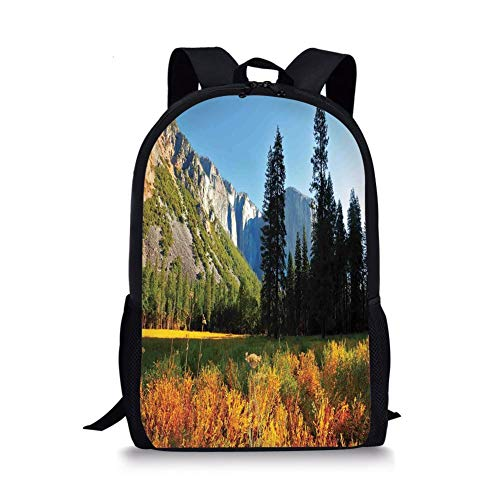 School Bags Yosemite,Birds Flight Flies Over Mountains Yosemite National Park Early Fall Season,Orange Blue Green for Boys&Girls Mens Sport Daypack -