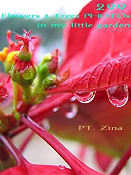 299 Flowers & Trees PHOTOs in my little garden : Chiangmai, Thailand (PHOTOs from my little garden) (English Edition) par [Zina, PT.]