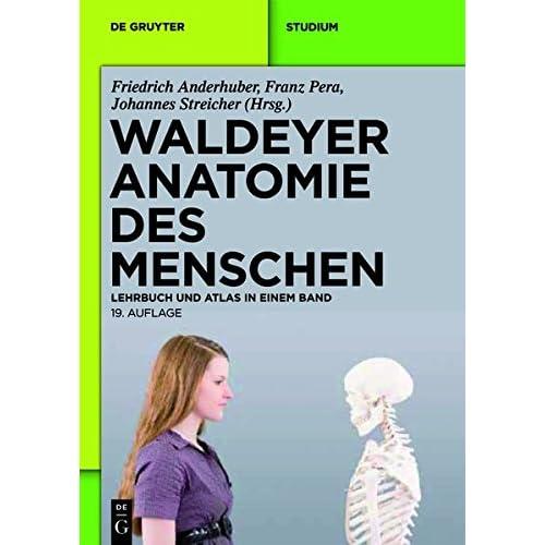 PDF] Waldeyer - Anatomie des Menschen: Lehrbuch und Atlas in einem ...