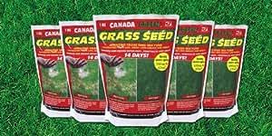 Canada Green Sac de semences de gazon en vrac 10kg
