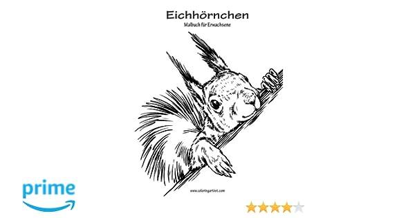 Eichhörnchen-Malbuch für Erwachsene 1: Amazon.de: Nick Snels: Bücher
