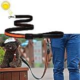 My only friend Haustier Reizende hübsche schöne Art und Weise Bequeme 1.2m mittlere und große Hundehaustier Solar + USB, die LED-Lichtzugseil auflädt, Größe: 120cm Bequem (Farbe : Orange)