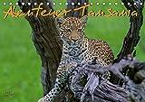 Abenteuer Tansania, Afrika (Tischkalender 2019 DIN A5 quer): Tansania Wildlife Kalender (Monatskalender, 14 Seiten ) (CALVENDO Tiere) - Frank Struckmann