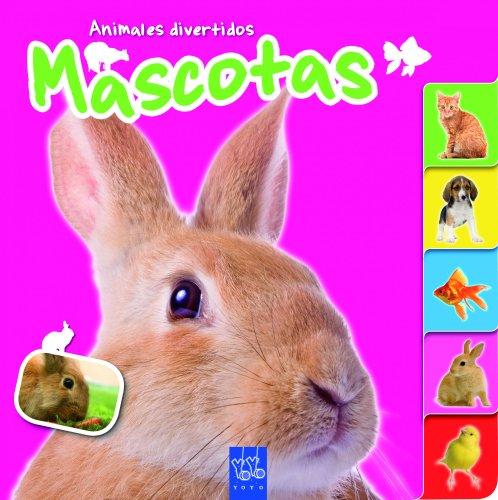mascotas-animales-divertidos-animales-divertidos-yoyo