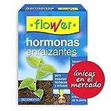 Flower 1-30595 - Hormonas enraizantes