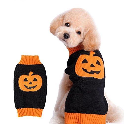NACOCO Hund Pullover Kürbis Haustier Pullover Halloween Urlaub Party für Katze und Puppy, M, Orange