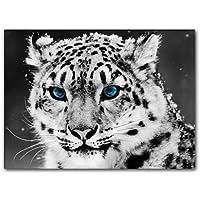 Suchergebnis auf f r schneeleopard bilder poster kunstdrucke skulpturen m bel - Poster wanddurchbruch ...