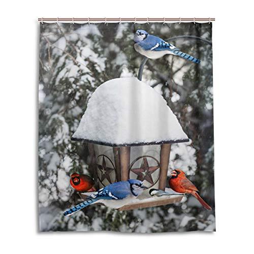 ALAZA(Shower Curtain) WOOR Wintervögel Kardinals Duschvorhang Badezimmer Home Decor Set Stoff Polyester waschbar wasserdicht 152,4 x 182,9 cm