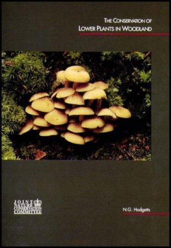The Conservation of Lower Plants in Woodland by Nick G. Hodgetts (2006) Paperback