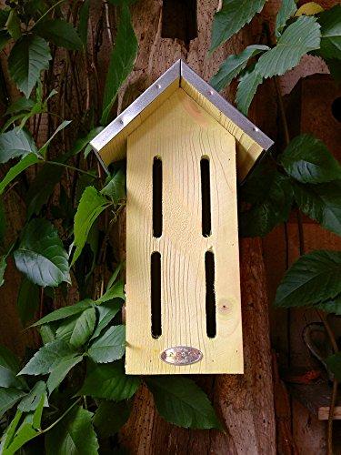 antikas – Papillon Boîte, Hôtel Hôtel à insectes papillon des papillons