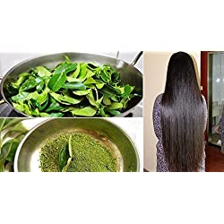 Go Organic Curry Leaves Powder Curry Leaves To Grow Long, Strong And Shiny Hair ( 100 Grm )