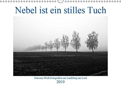 Nebel ist ein stilles Tuch - um Landsberg am Lech (Wandkalender 2019 DIN A3 quer): Schwarz-Weiß-Fotografien von Martina Marten (Monatskalender, 14 Seiten) (CALVENDO Orte)