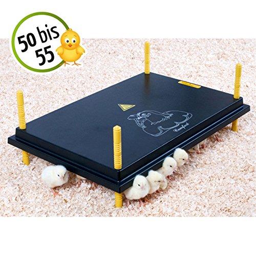 Wärmeplatte 40x60cm 62W Küken-Aufzucht Wärmelampe Geflügel Hühner - 2