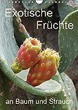 Exotische Früchte an Baum und Strauch (Wandkalender 2018 DIN A4 hoch): Tropisches Obst fotografiert wie es wächst an der Pflanze (Planer, 14 Seiten ) ... [Apr 01, 2017] Goldscheider, Stefanie