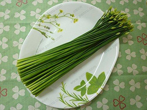 50 Samen/Pack, Chinesischer Schnittlauch Moos, grün Bio-Gemüsegarten Balkon Bonsai Lauchsamen