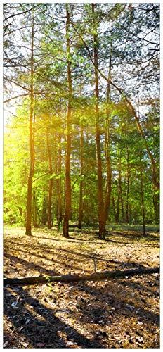 Wallario Selbstklebende Türtapete mit Schutzlaminat, Motiv: Sonnenstrahlen tief hinter Dem Wald - Größe: 93 x 205 cm in Premium-Qualität: Abwischbar, Brillante Farben, rückstandsfrei zu entfernen