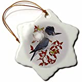 3dRose orn_7221_1 Belted Kingfisher Porcelain Snowflake Ornament, 3-Inch