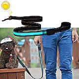 My only friend Haustier Reizende hübsche schöne Art und Weise Bequeme 1.2m mittlere und große Hundehaustier Solar + USB, die LED-Lichtzugseil auflädt, Größe: 120cm Bequem (Farbe : Blau)