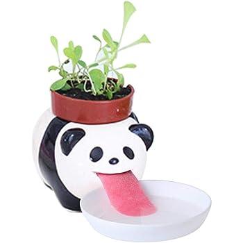 Creative Animal Pots De Fleurs Mignon Mini Pot De Fleurs D Arrosage