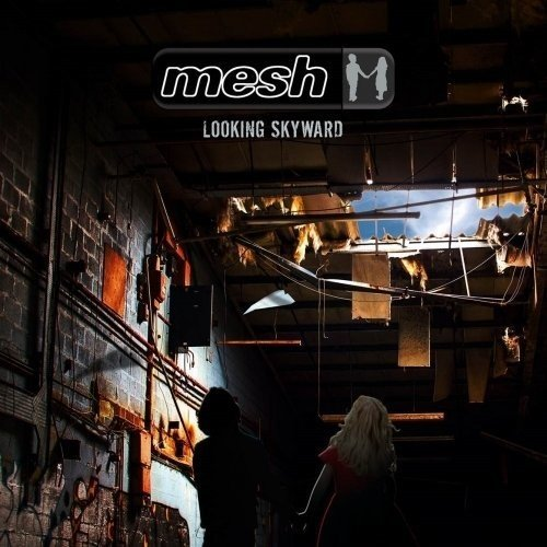 Mesh (Looking Skyward)