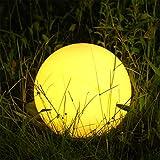 Albrillo Luz Solar de Jardín con 12...